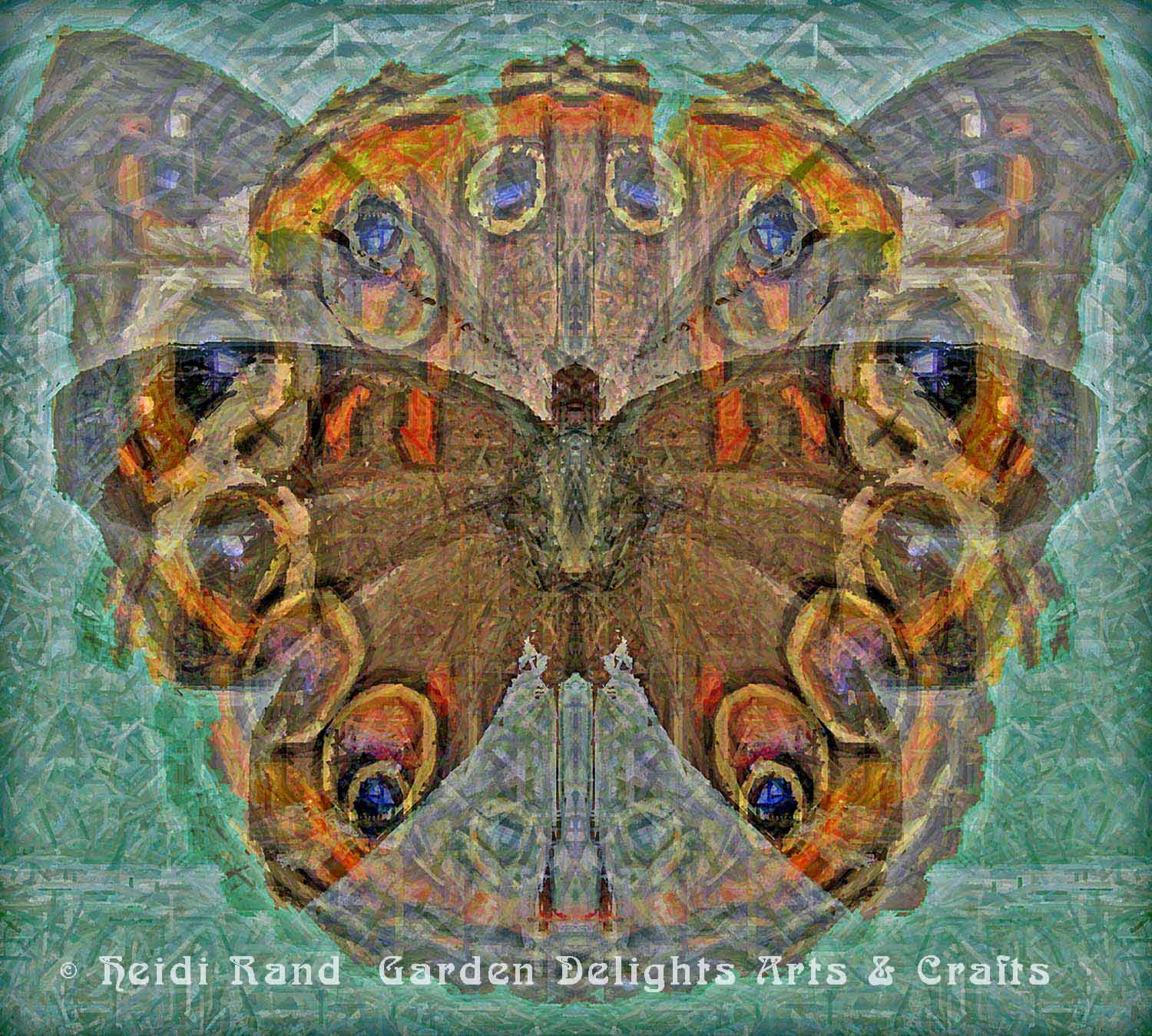 Buckeye butterfly collage