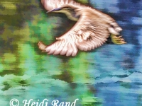 Egret soaring