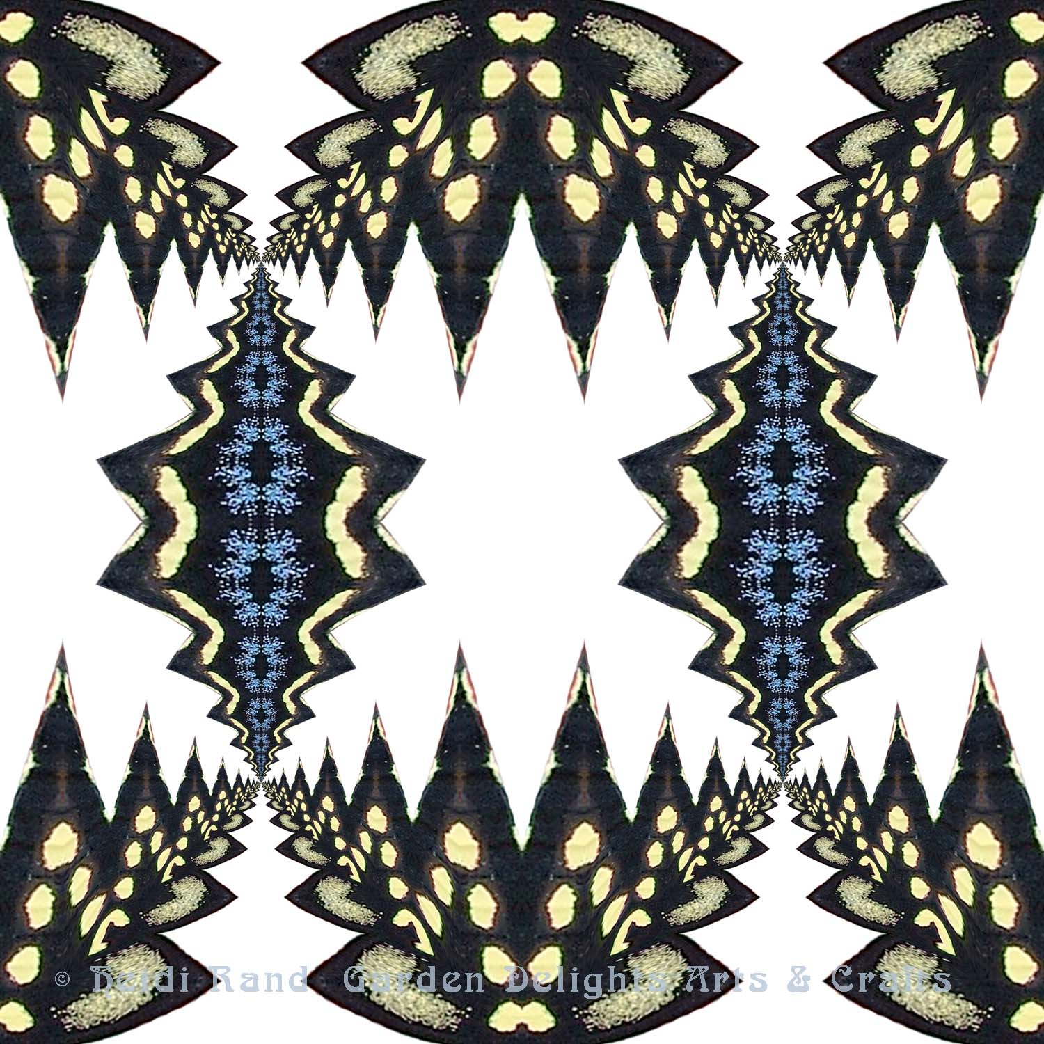 Swallowtail cutout with white