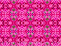 Fuchsia bright