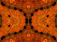 Golden butterfly and lily collage orange