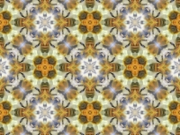 Honey bees kaleidoscope