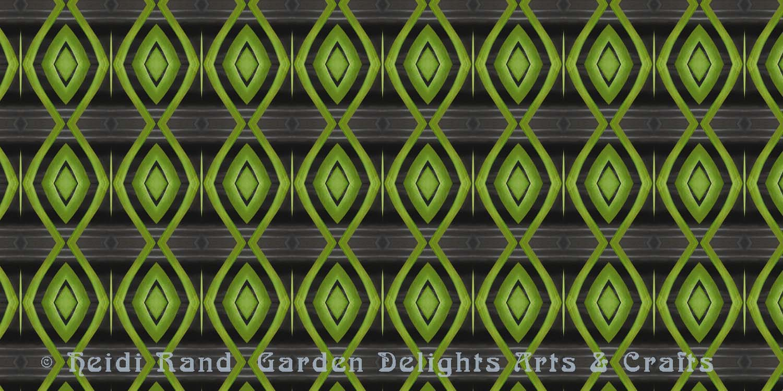 Vanda foliage kaleidoscope
