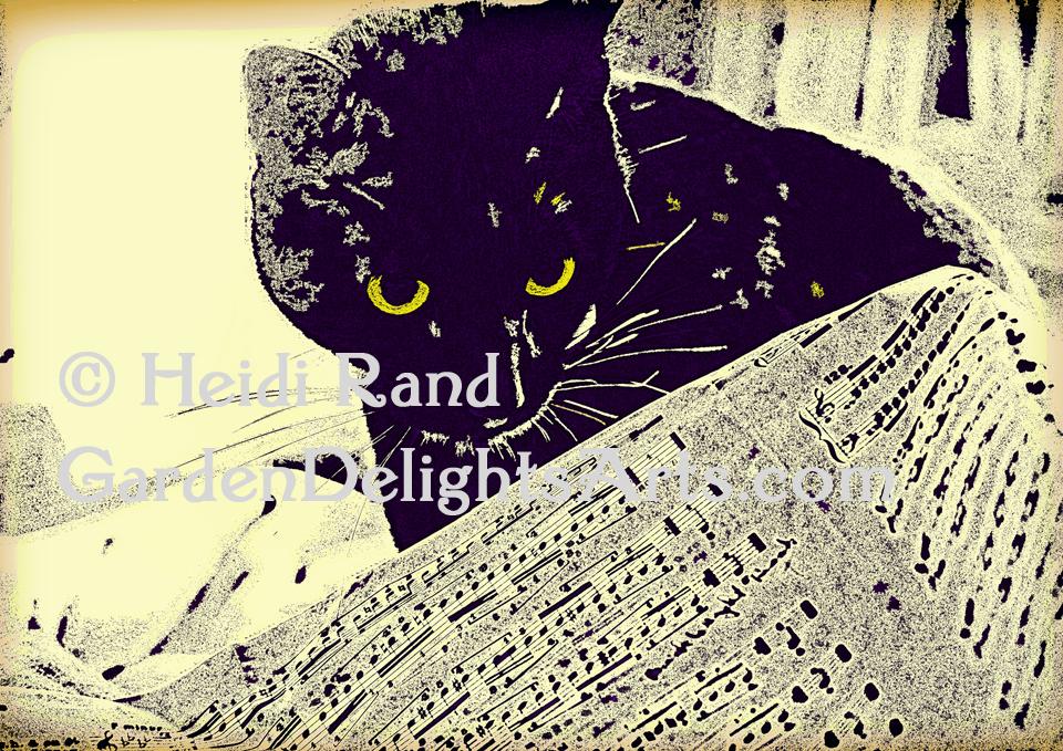 Musical cat GR1360