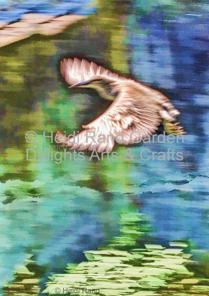 Egret soaring. Greeting card 1018