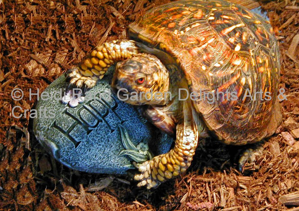 Turtle happiness. Greeting card 1352