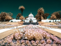 Conservatory of Flowers infrared