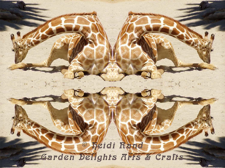 Giraffe kaleidoscope