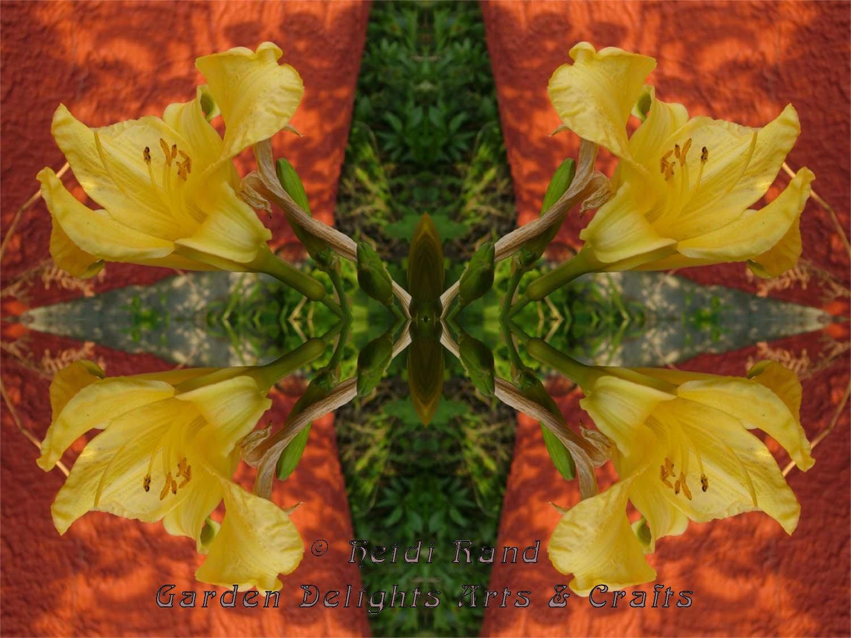 Lily yellow kaleidoscope