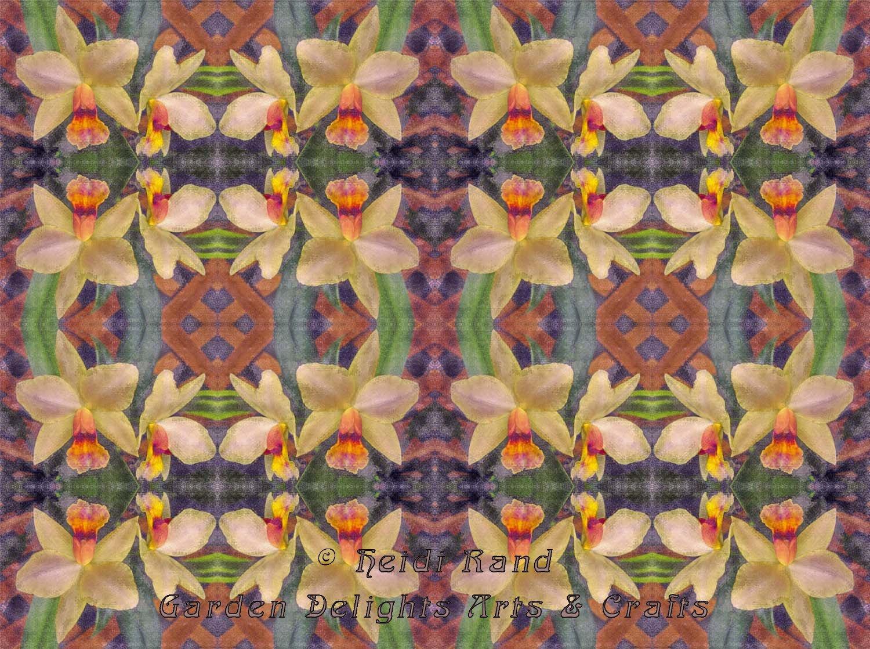 Phaius blurred kaleidoscope