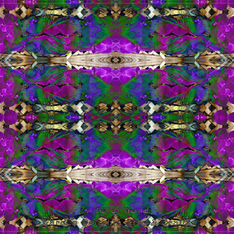Phalaenopsis and feather collage  kaleidoscope