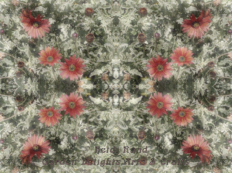 Red strawflowers kaleidoscope