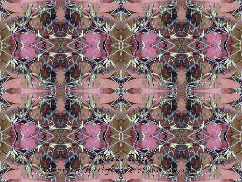 Seed pods kaleidoscope