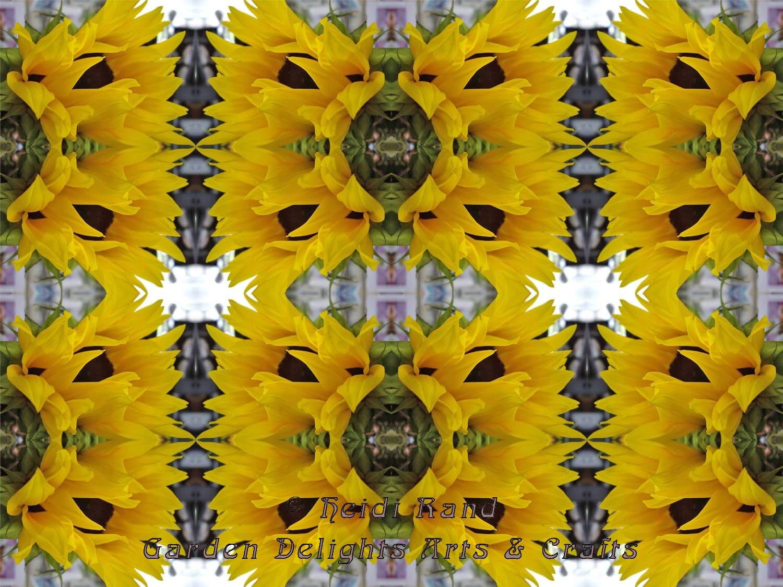 Sunflower kaleidoscope