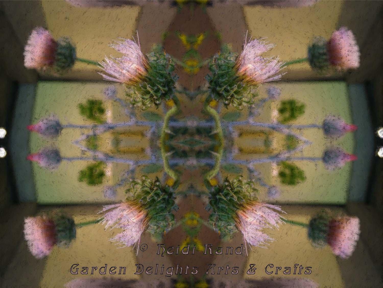 Thistle kaleidoscope