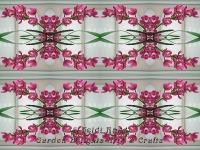 Pink cymbidium chain kaleidoscope