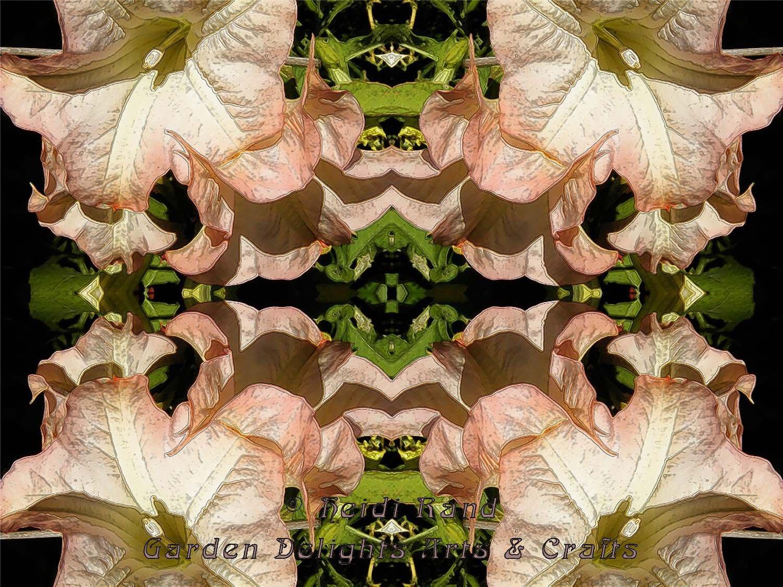 Angel\'s trumpets kaleidoscope