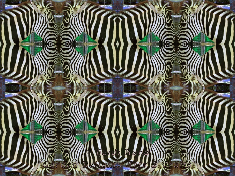 Zebra kaleidoscope