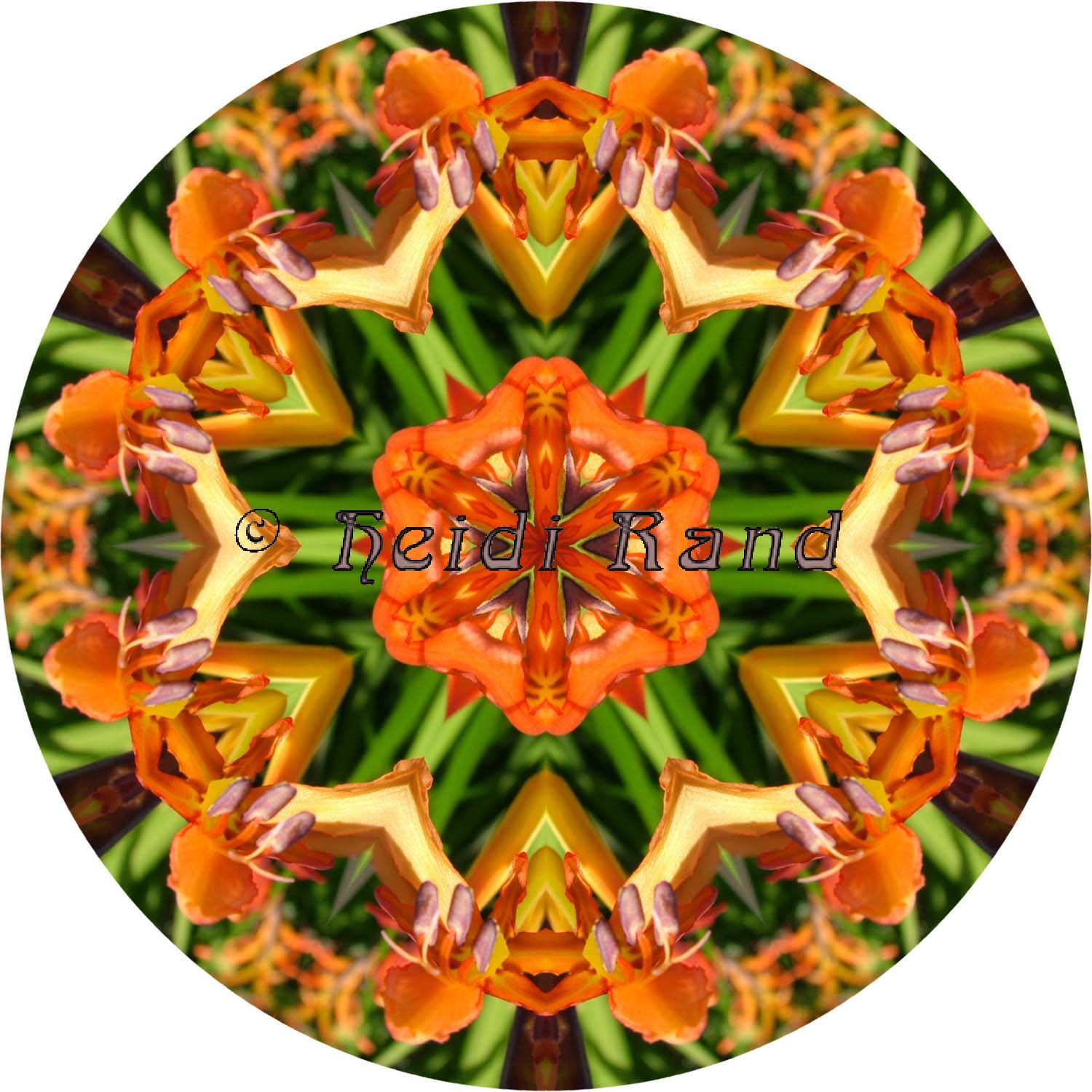 Orange flower circle mandala