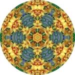 Cymbidium yellow mandala