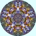 Iris multicolor and wisteria mandala