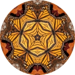 Monarch butterfly mandala