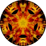 Sunflower sunset collage mandala