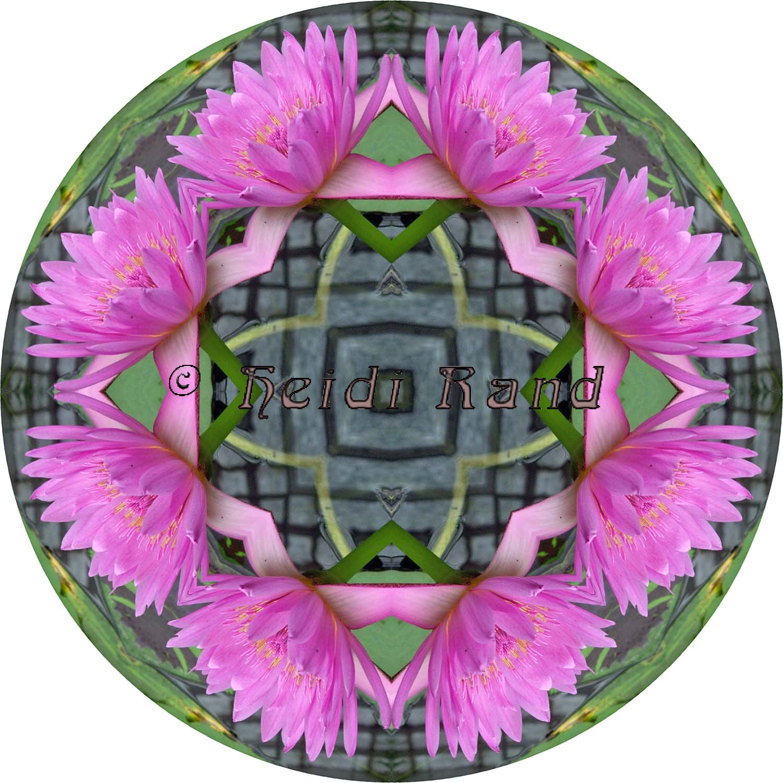 Water lily mandala
