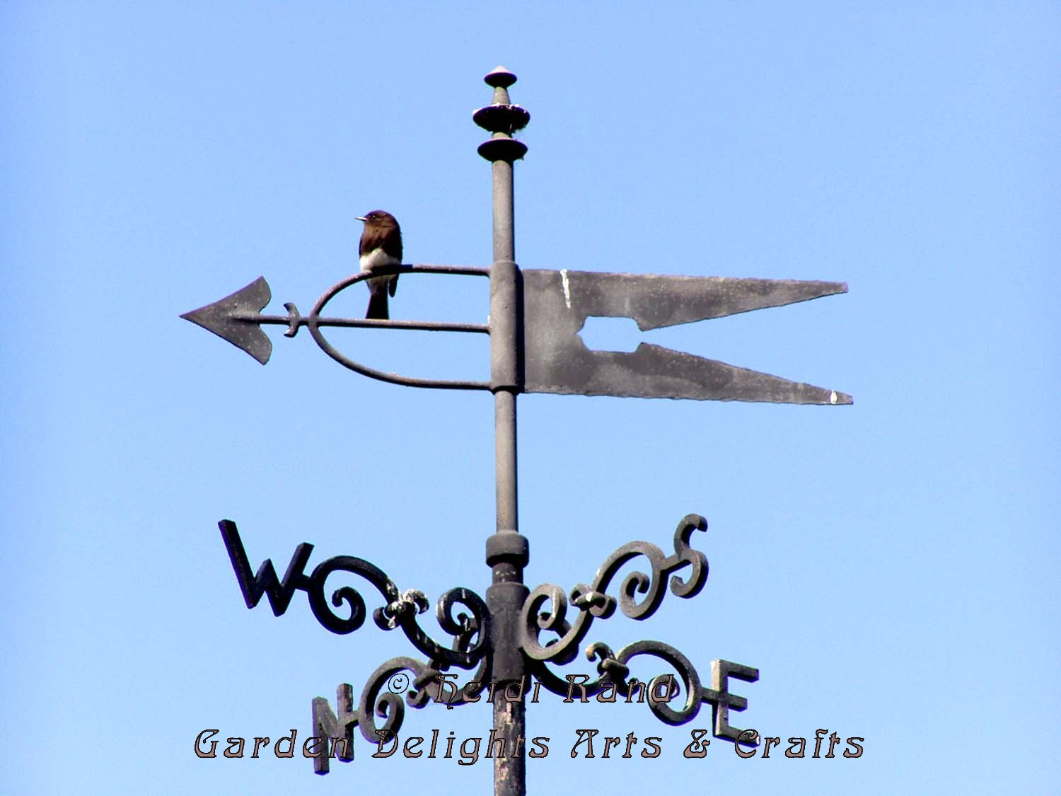 Weather vane perch
