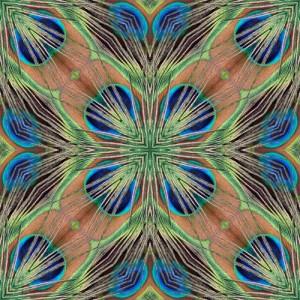 Peacock feather sheen