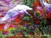 Egret Allium