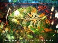 Gingko broken leaf collage