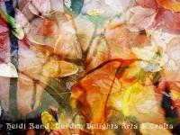 Sunset fallen leaves