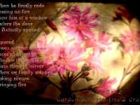 Wildflower collage poem