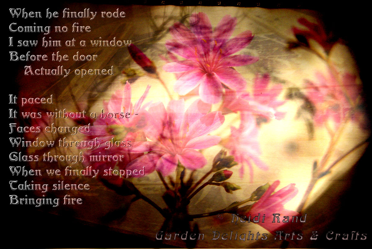 Wildflower collage poem
