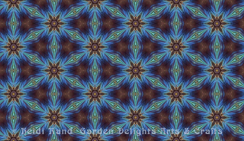 Faithful beauty moth kaleidoscope