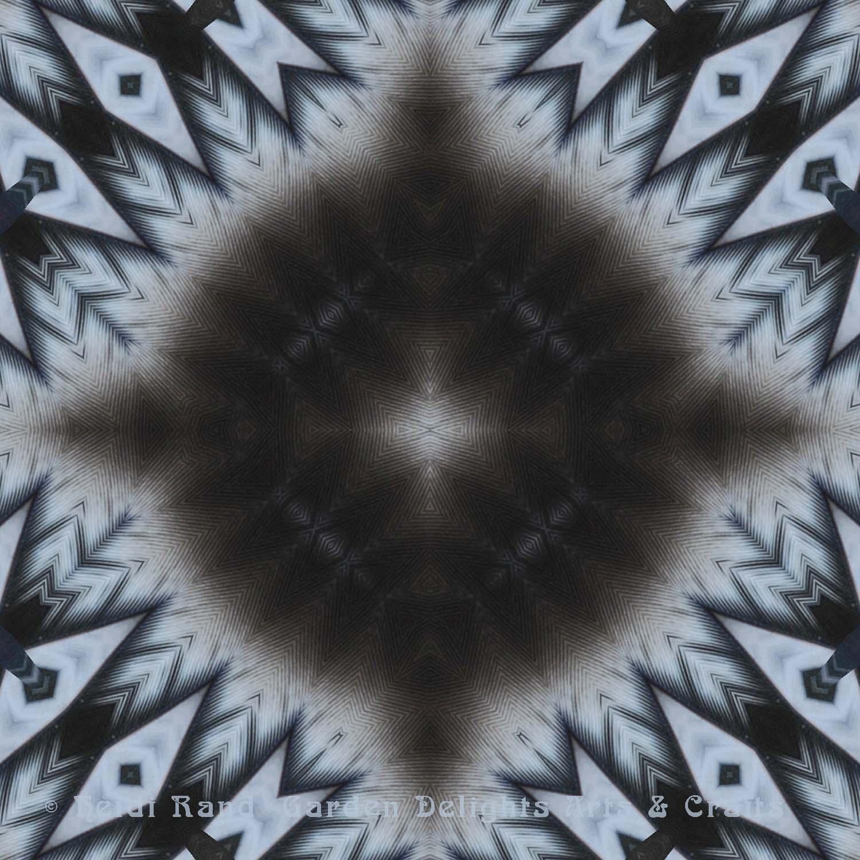 Feather fern dark