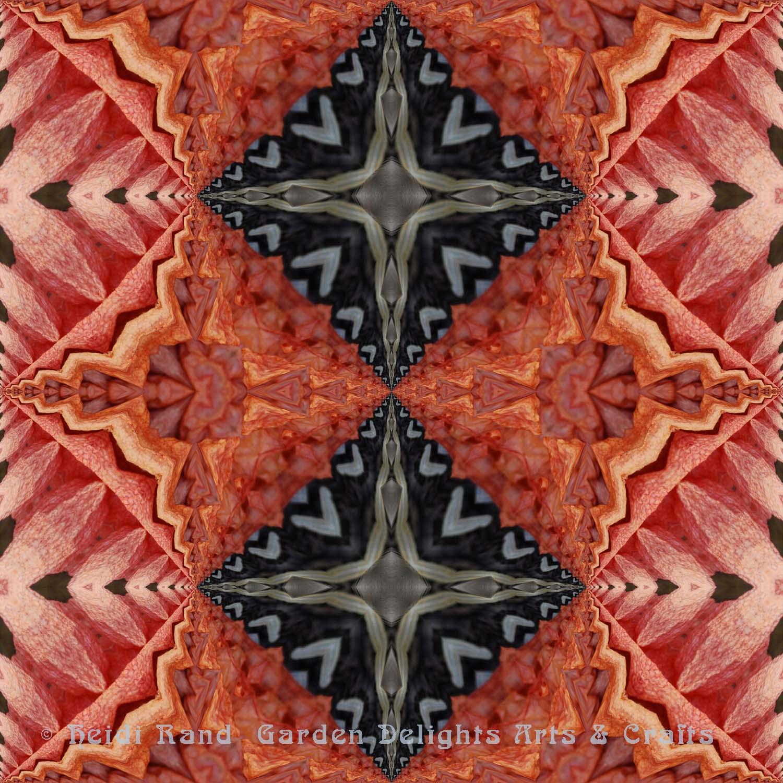 Feather fern red dark