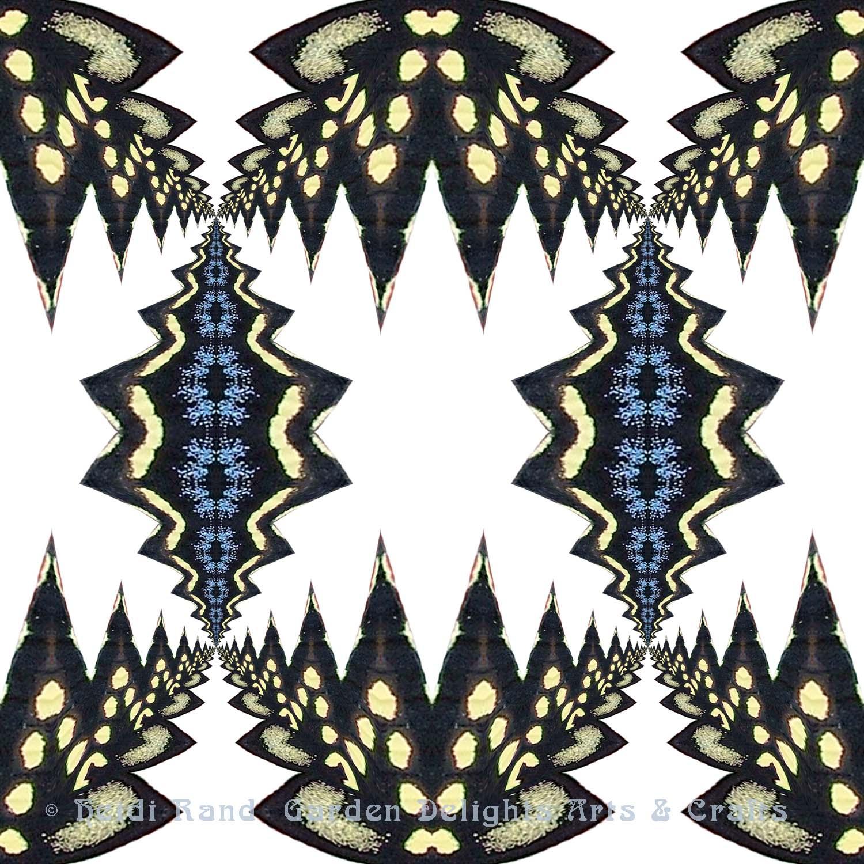 Swallowtail cutout with white