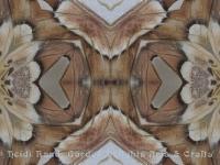 Prometha moth