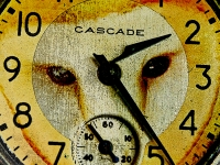 Who knows where the time goes? Greeting card 1135