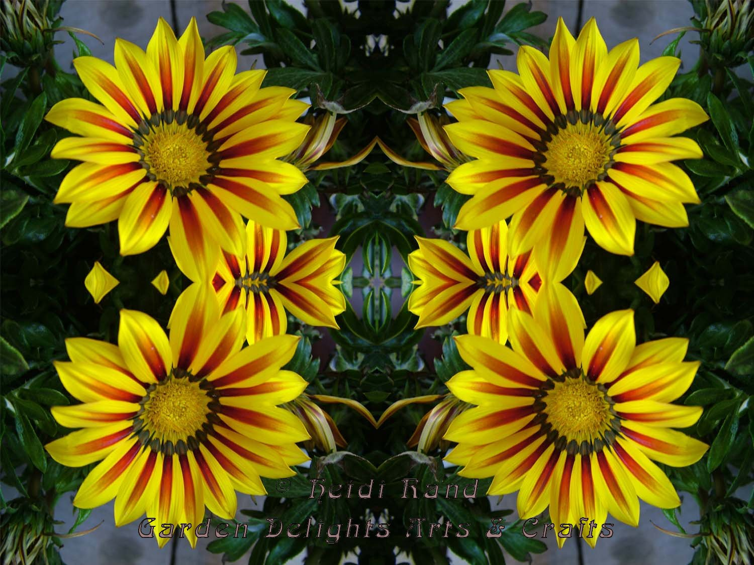 Daisies yellow kaleidoscope