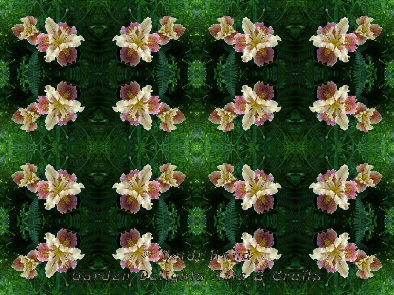 Iris kaleidoscope
