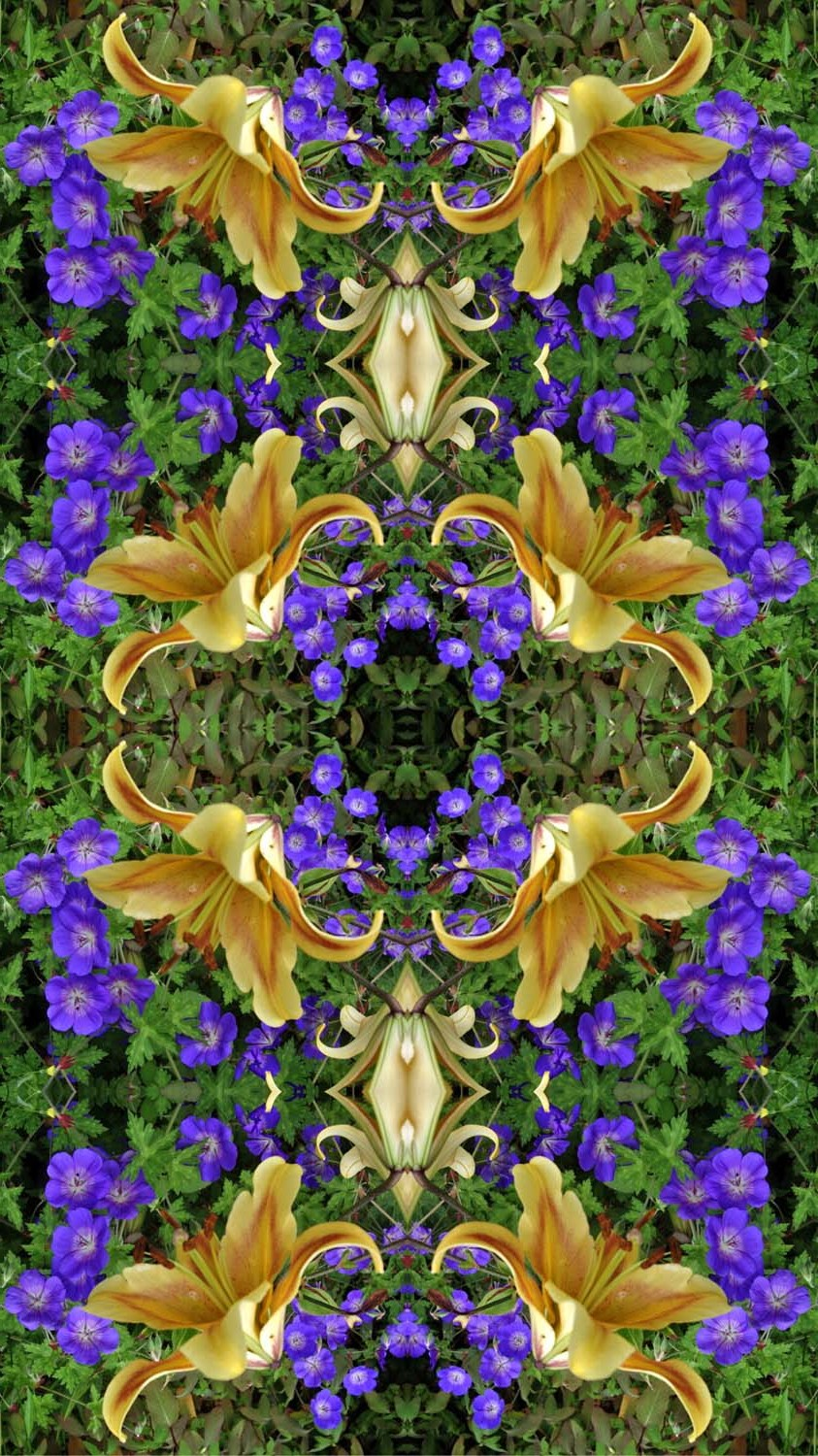 Lily and blue kaleidoscope