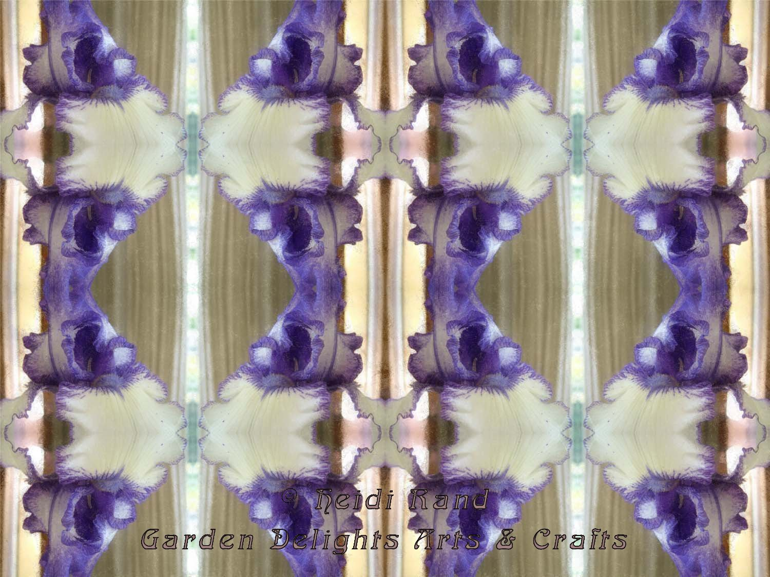 Purple and white iris kaleidoscope