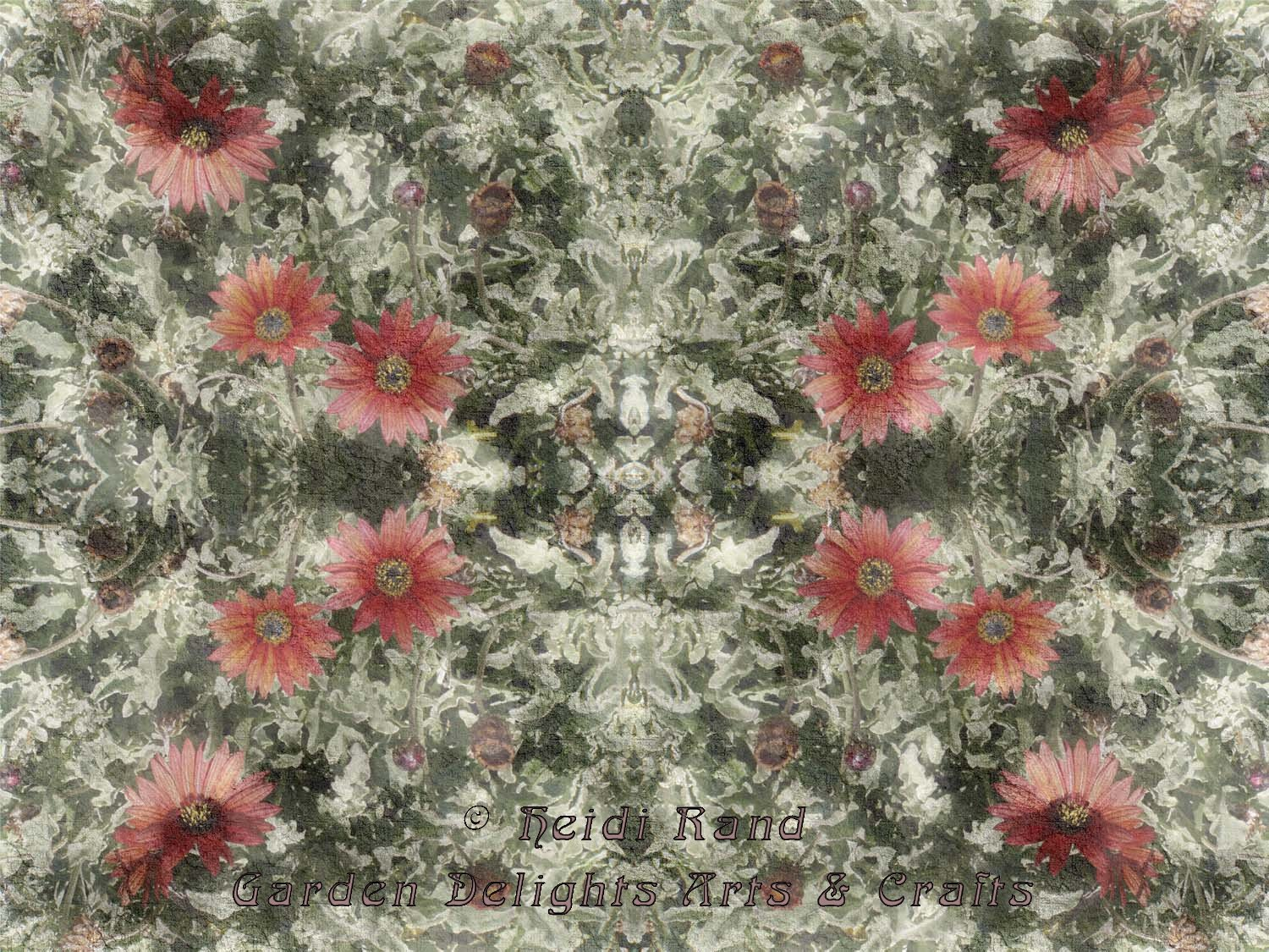 Red strawflowers kaleidoscope