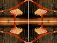 Circus contortionist kaleidoscope