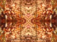 Golden collage kaleidoscope