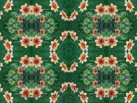 Daisies kaleidoscope