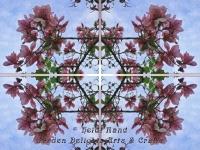 Magnolia kaleidoscope